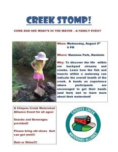 CREEK STOMP FLYER